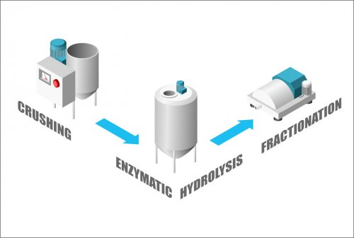 Image of EXTRACTION PROCESS